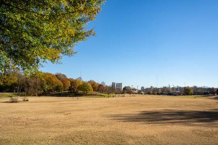 Beautiful day in Piedmont Park Atlanta Georgia USA