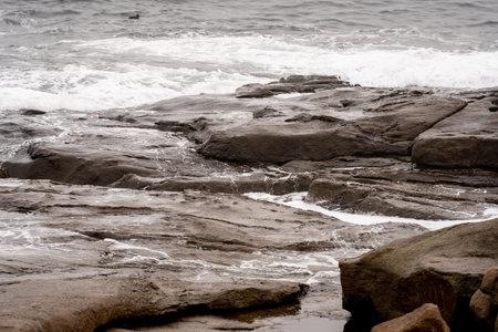 Wet coastal rocks Maine USA Foto de archivo