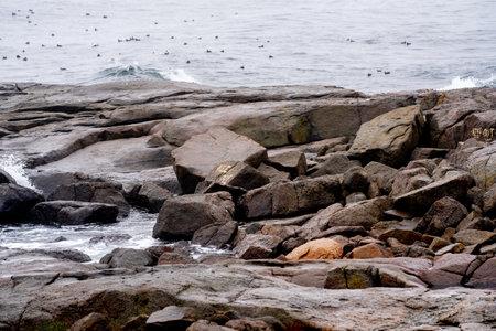 Rocky coast York Maine USA