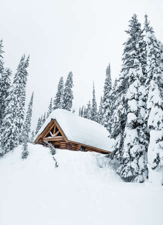 Large beautiful wooden hut to stay in a very snowy forest in foggy weather.