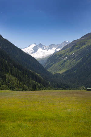 Meadow in a valley in the Tyrolean Alps, in the background is a mountain with snow on the summit.