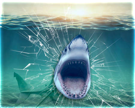 Shark coming out of the wall. Wallpaper for the walls. 3D Rendering. 스톡 콘텐츠