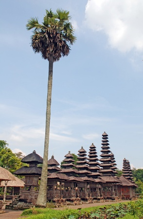 Palm and Taman Ayun Temple in Mengwi (Bali, Indonesia) on a beautiful sunny day. photo