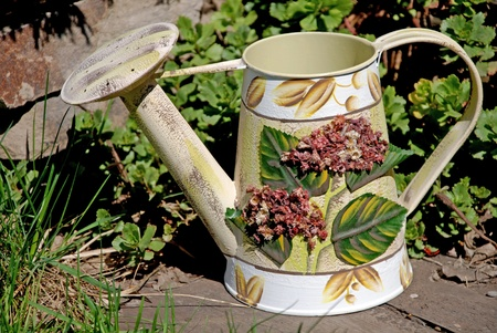 wateringcan: Vintage watering-can in the garden Stock Photo