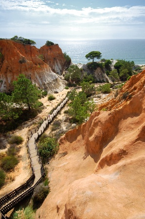 beautiful vertical landscape with red cliffs, pine, ocean and wooden path(Portugal) photo
