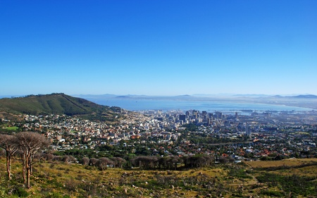 panoramic view of Capetown and Table Bay(South Africa) photo