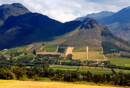 Rural landscape with mountains, fields and vineyard, Capetown province (South Africa) photo