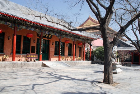 Traditional chinese patio with red pagoda and trees in early spring. In garden near Forbidden city.