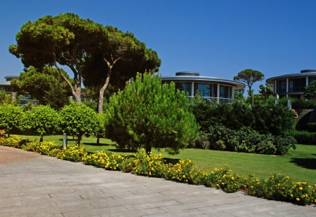 Garden with pine tree and footpath in contemporary holiday villa