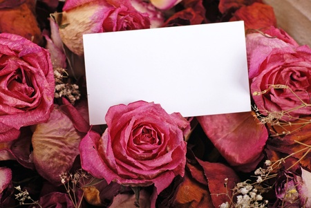 white empty card for your message on romantic dried roses background, selective focus photo