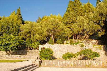 Stenen Muur Tuin : Toscane landelijke tuin met olijven cipressen voetpad trappen