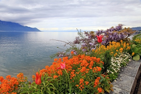 A beautiful spring landscape with flowers and Lake Geneva in Montreux, Switzerland. Selective focus Stock Photo - 20674508