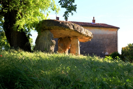 megalith: Megalith dolmen - Celtic Stone in Draguignan, Provence, France