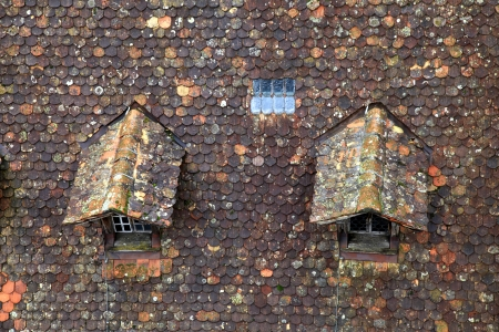 Old brown tile roof with dormer photo