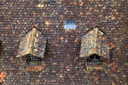 dormer: Old techo de tejas de color marr�n con buhardilla