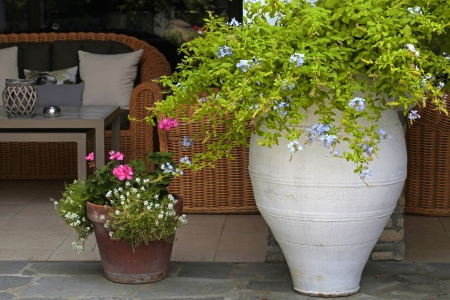Blossom flowers in flower pots at summer resort patio Greece Stock Photo - 23014804