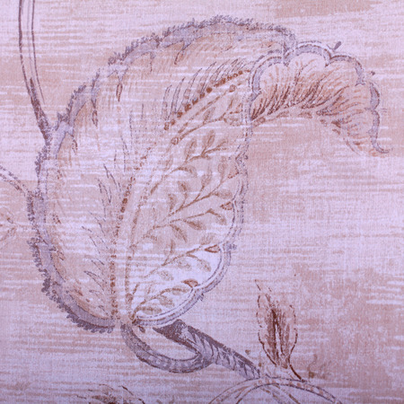 vintage beige wallpaper with shabby chic leaf pattern, square image photo
