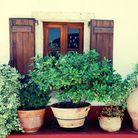Window with wood shutters and many flower pots in old home (Crete, Greece)  photo