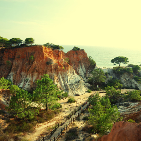 landscape with orange cliffs and pine trees on the Atlantic coast in Algarve, Portugal photo