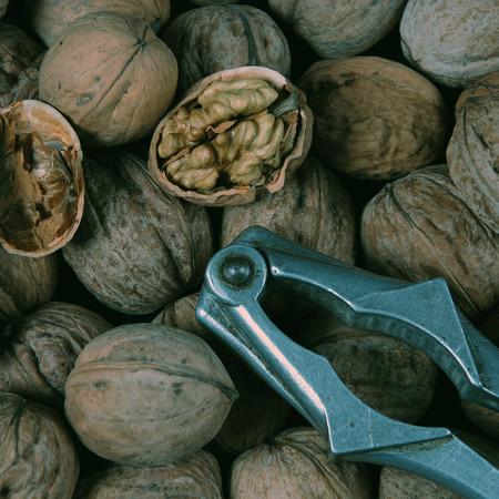 nut cracker: Walnut and nut cracker
