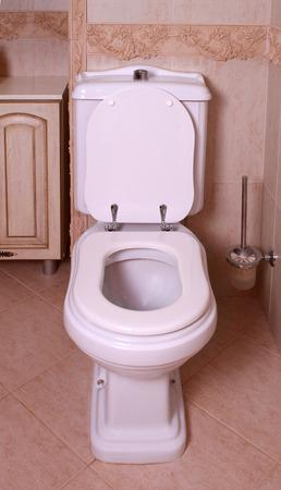 flush: Home flush toilet with toilet bowl