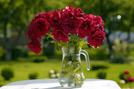 garden green: Glass pitcher with red roses bouquet in the summer garden, green grass background, selective focus