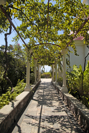 passage: Beautiful pergola passage in the summer garden