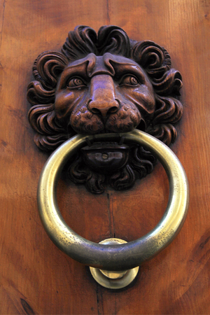 entrance gate: Antique door knob with lions head on old wooden obsolete door, Florence, Italy