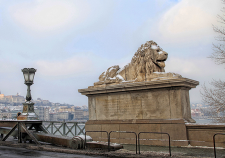 Lion sculptures of the Szechenyi Chain Bridge with the view of danube river, Budapest, Hungary in winter