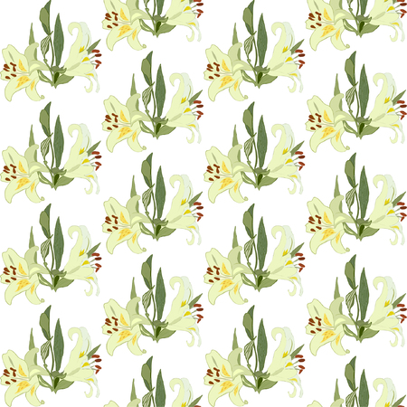 Floral Seamless Pattern with Lilly Flowers. 矢量图像