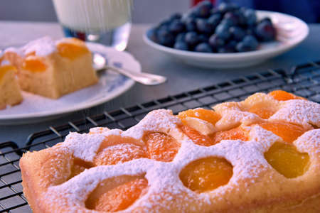 Homemade baked cake with fresh apricots and a glass of milk, according to the grandmothers recipe