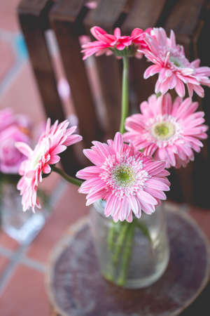 Chrysanthemum flowers sticks in clear glass. Used for decoration.Select focus point Stock Photo