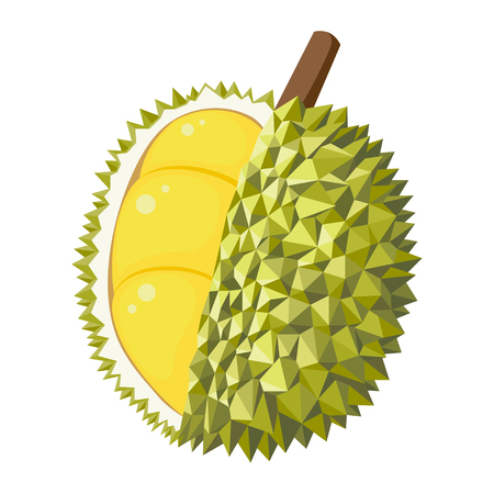 Durian fruite polygon vector design on isolated white background