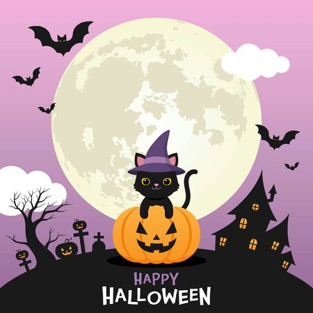 Cute black cat wear witch hat on halloween pumpkin with full moon purple night sky background