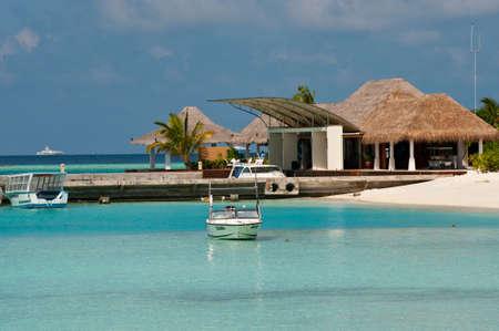 Maldives Tourism: the sea, building, animal