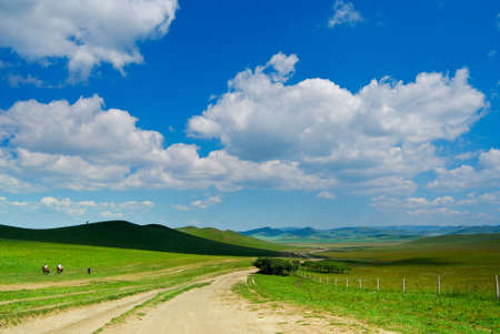 Bashang beautiful grassland in China Stock Photo - 4650639