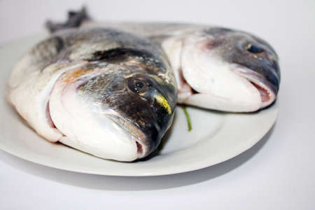 two fresh shiny dorada from village market on the plate.