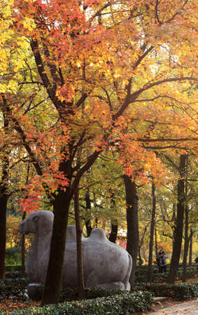 yat sen: the color of Dr  Sun Yat-sens Mausoleum
