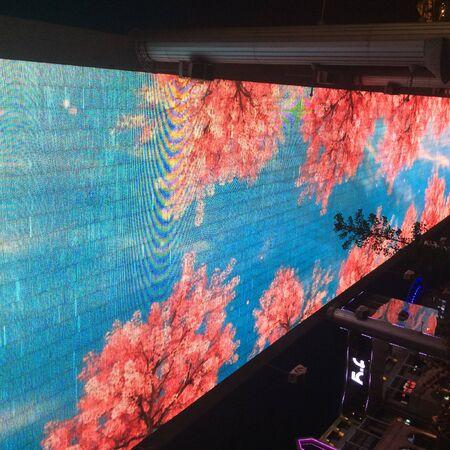 screen: big screen show flowers Editorial