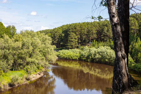 A small river flows around the forest, with the reflection of the trees in it against the blue sky. Nature of the Siberian expanses.