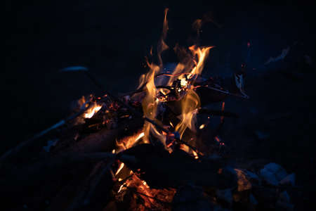 The fire burns with a bright flame at night. Branches and wood are burning with fire.
