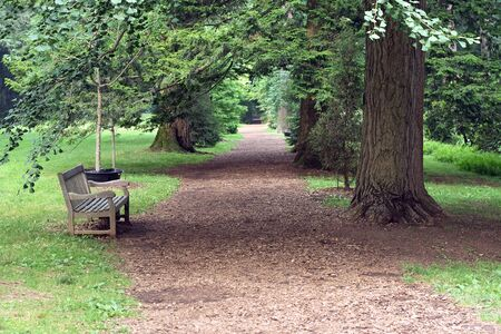 View of a tranquil garden path leading into the forest.