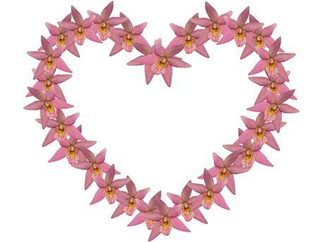 Valentine Heart Over White Imagens