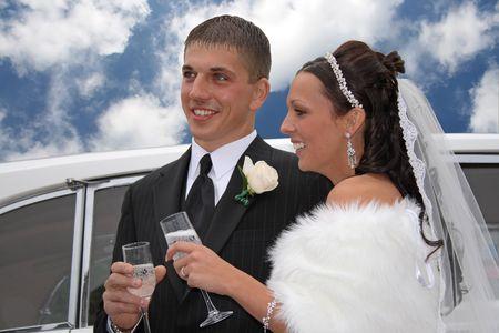 Wedding Toast Imagens - 2434833