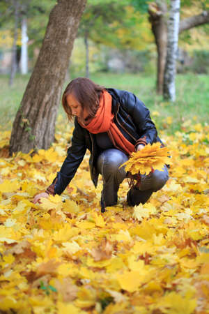 squatting down: Young beautiful woman in orange scarf gathering fallen autumnal leaves in the park