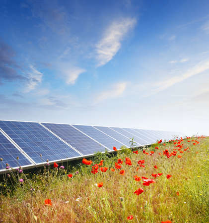 solar electric: Solar panels under blue summer sky on field of flowers Stock Photo