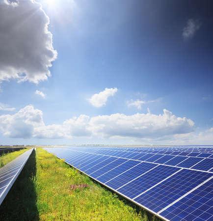 paneles solares: Los paneles solares con campo de flores