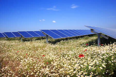 Solar panels with field of flowers Stock Photo