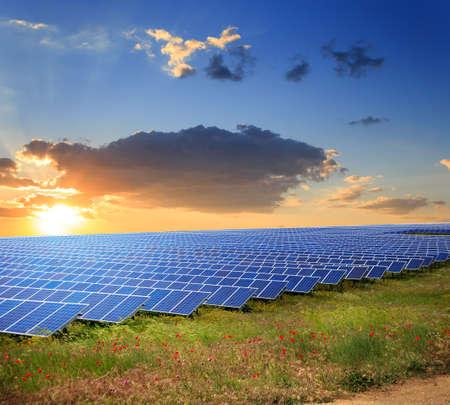 Solar panels under sunset summer sky on field of flowers Stock Photo