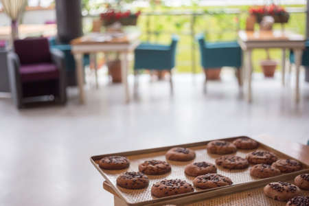 Brown tasty chocolate cookies with crackles and chocolate chips lay at metal tray at the background of cafe interior. Shallow dof. Focus on foreground. Stock Photo